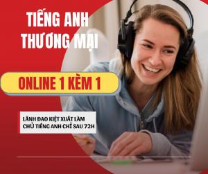 học tiếng anh thương mại online 1 kèm 1